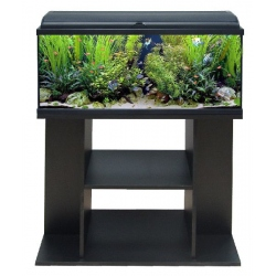 AQUADREAM 100 LED COMPLETO NEGRO