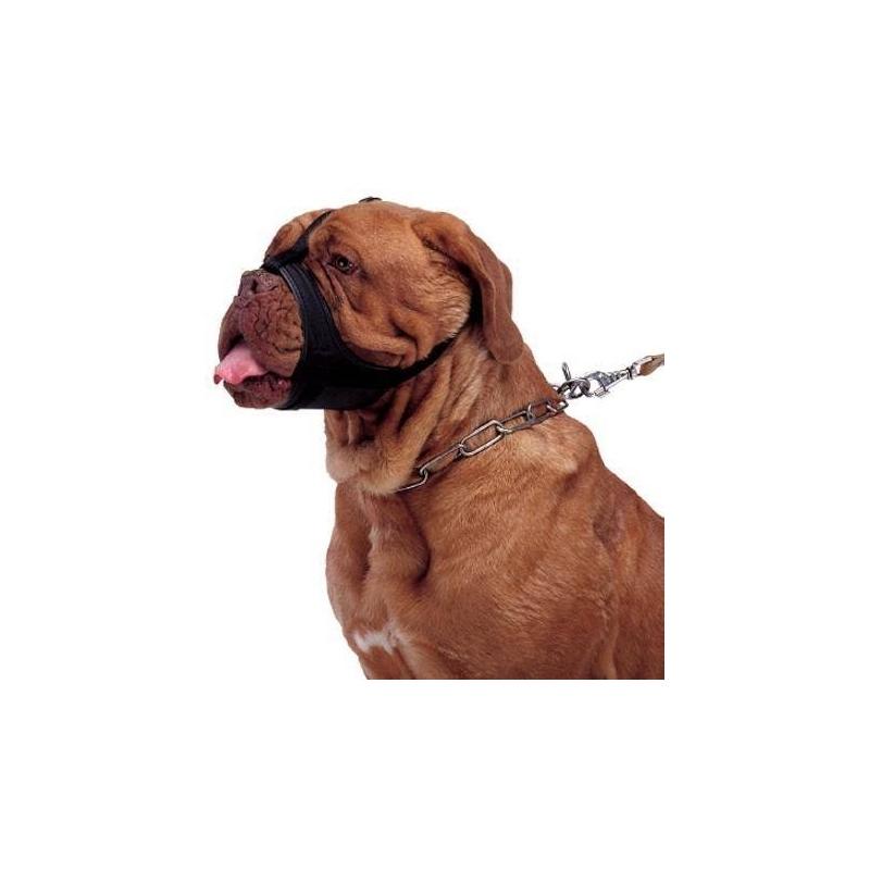 Bozal para boxers dogos y perro de hocico chato verdecora - Verdecora mascotas ...