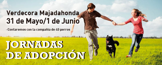 Las jornadas de adopci n llegan a verdecora blog verdecora for Verdecora madrid