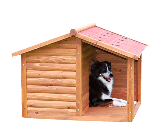 C mo elegir una caseta de perro blog verdecora - Casetas para perros ...