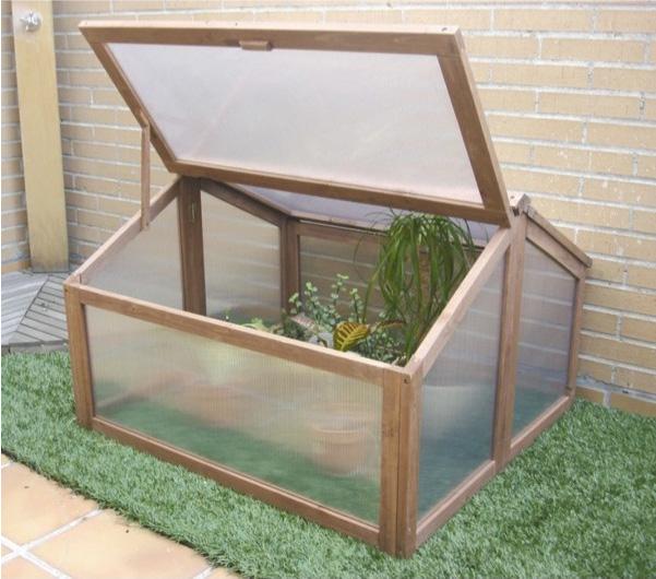 Prepara a tus plantas para el fr o blog verdecora - Invernaderos de terraza ...