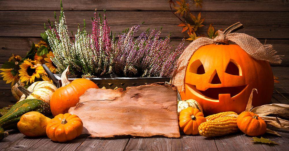 Diy Haz Tu Calabaza De Halloween Blog Verdecora - Calabaza-hallowen