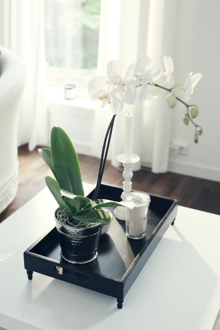 Un sencillo centro de mesa con pocos elementos y mucha elegancia