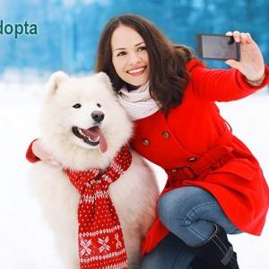 D a canino en verdecora arroyo culebro blog verdecora for Verdecora malaga