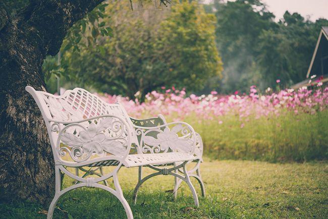Cinco claves para el diseño de jardines - Blog Verdecora
