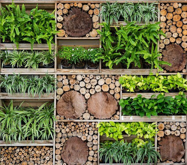 Jardines verticales cuatro consejos consejos verdecora for Jardines verticales con madera