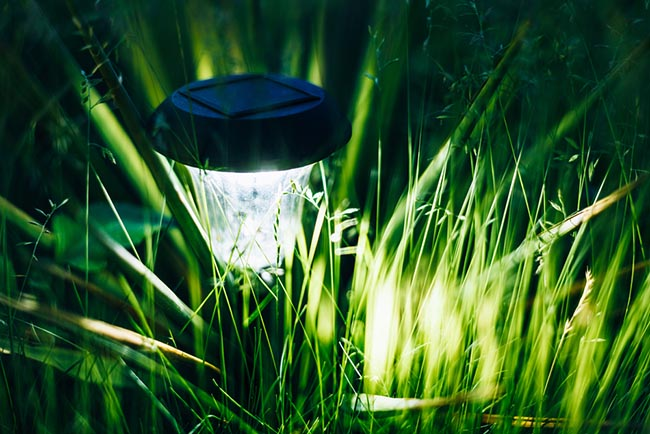 Iluminaci n del jard n la magia de la luz blog verdecora for Luces led jardin