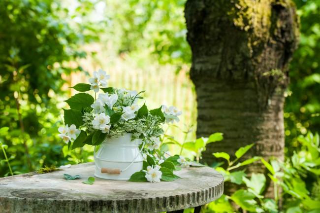 La flor del Jazmín es perfecta también para decorar