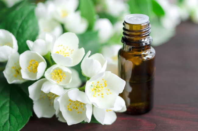 La flor del Jazmín cuenta con un buen número de propiedades curativas
