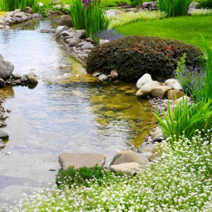 Peces koi el pez simb lico de oriente blog verdecora for Estanque jardin pequeno