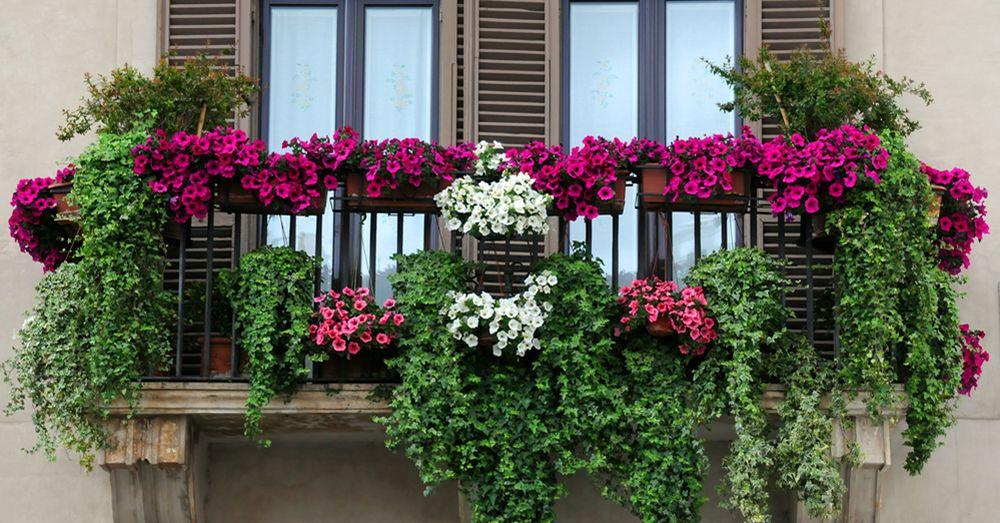 consejos decorar balcon pequeño