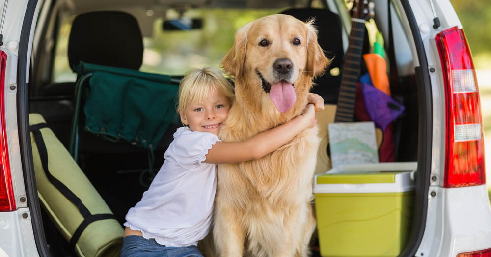Viajar con tu mascota en verano blog verdecora - Verdecora mascotas ...