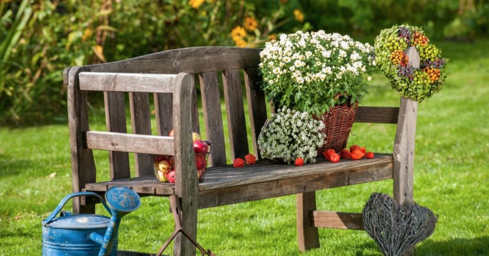 Cinco flores para el jardín de otoño