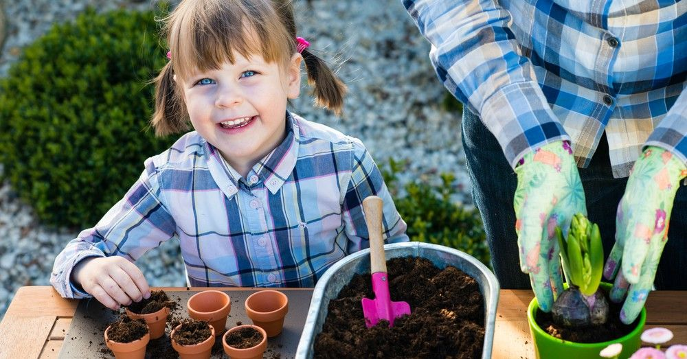 jardiner a para ni os ens ales a plantar blog verdecora