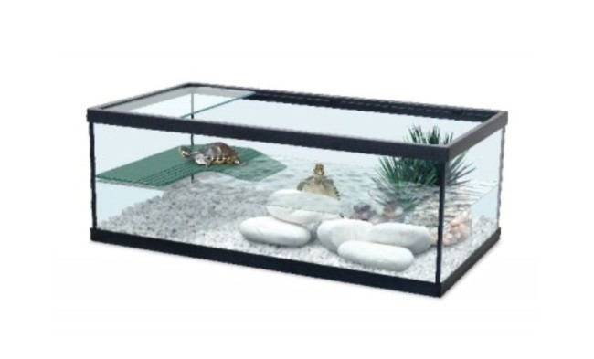 Qu cualidades debe tener una pecera para tortuga blog for Peceras para tortugas