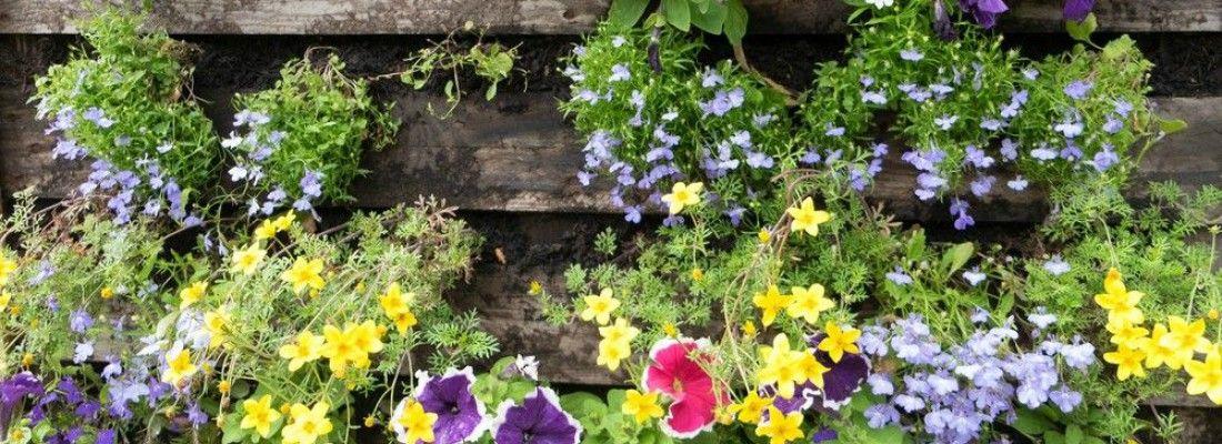 Diy c mo hacer un jard n vertical con palets blog verdecora - Construir jardin vertical ...