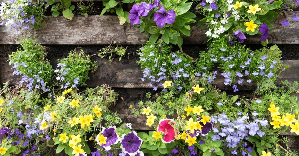 Diy c mo hacer un jard n vertical con palets blog verdecora Jardin vertical en palets