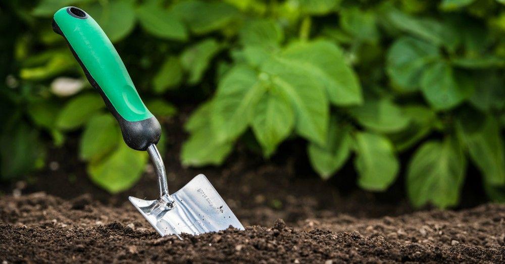 Cómo preparar la tierra para el huerto   Blog Verdecora