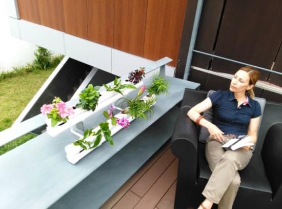 Cultivo hidropónico de flores y plantas de huerto