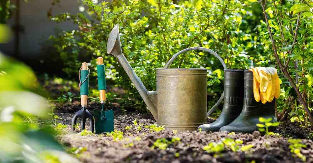 Cómo preparar el jardín para la primavera