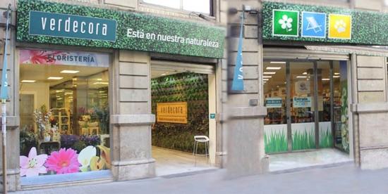 Tienda Verdecora Urban Valencia