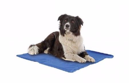 Colchón refrigerante para perros