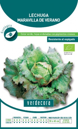 Semillas de lechuga marca Verdecora