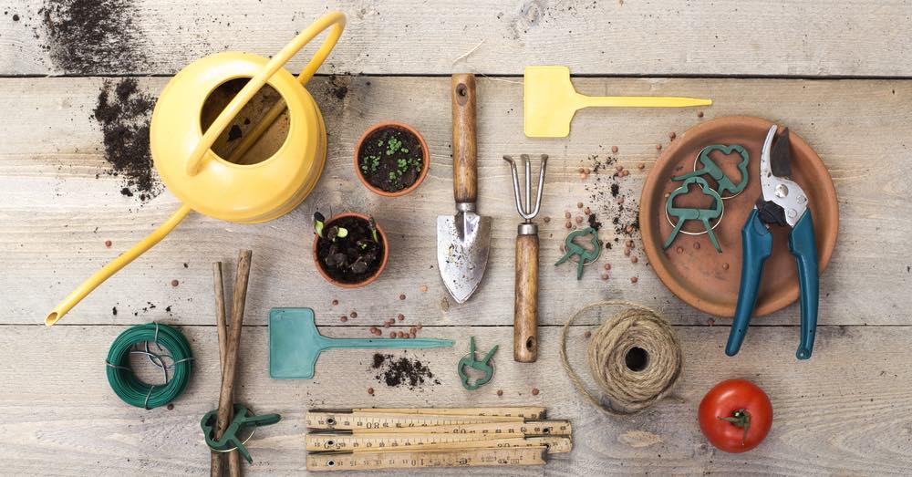 Herramientas básicas de jardinería: qué necesitas