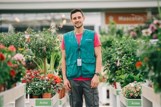 Servicio de diagnóstico de plantas de tiendas Verdecora