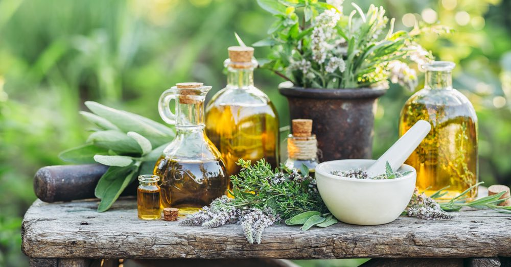 Cómo crear tu propio huerto medicinal