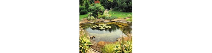 Estanques de Jardín