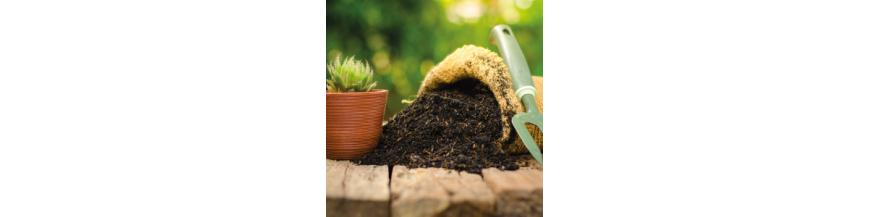 Sustrato Cactus y Crasas