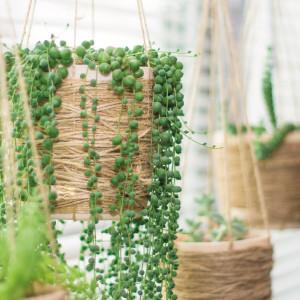 Planta Colgante Artificial
