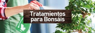 Tratamiento Bonsái
