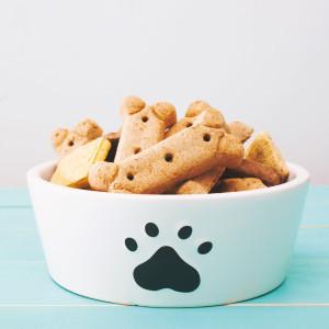 Snack perro