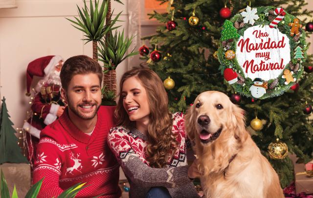 Navidad Verdecora 2019