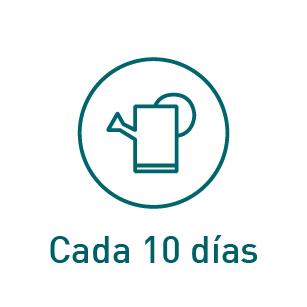 riego_10_dias